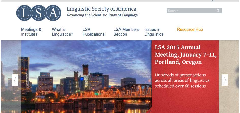 LSA banner