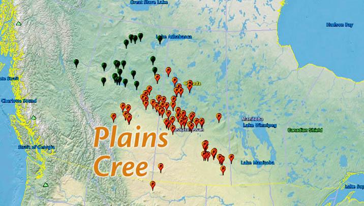plains cree review5